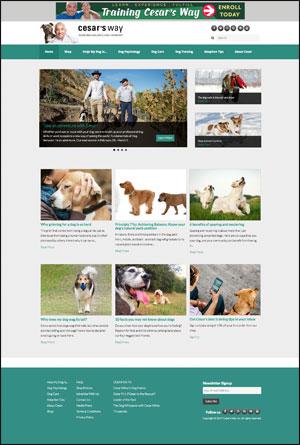 cesarswaywebsite